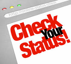 Plural of status: status or statuses? | Mary Morel | Online Writing Training