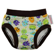 Cloth Trainers Blueberry Cloth Diapers Hidden Potty