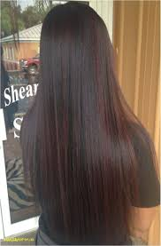 Fashion Light Chestnut Brown Hair Color Chart The Best