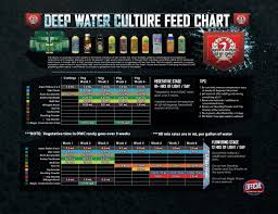 House And Garden 8 Week Feed Chart Dwc