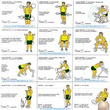 Biceps Exercise Chart Best Biceps Exercises Workout Plan For A Big Strong Bicep