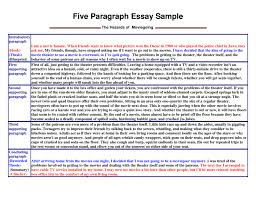 persuasive essay introduction example leadership introduction essay volleyball 5 free s magakiru