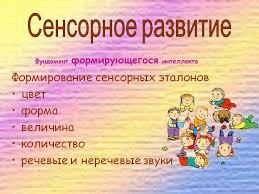 Курсовая Работа Сенсорное Развитие Детей Раннего Возраста  курсовая работа сенсорное развитие детей раннего возраста