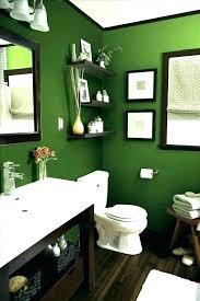 sage bathroom sage green bathroom ideas pertaining to paint plan sage bathroom rugs