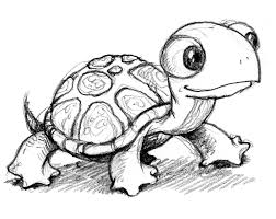 Small Picture printable turtle sketch drawing coloring easy to drow