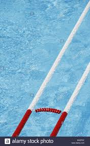 empty olympic type water polo swimming pool with lanes stock image