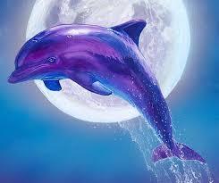 dolphin wall decor dolphin canvas art large beach painting dolphin canvas wall art dolphin moonlight painting gallery wrap on dolphin canvas wall art with dolphin wall decor dolphin canvas art large beach airstrike