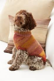 Free Knitted Dog Sweater Patterns Enchanting Knitting Patterns Galore Proud Puppy Dog Sweater