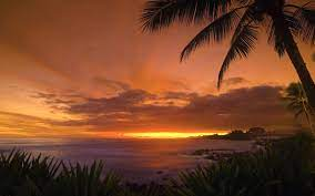 Tropical Sunset Wallpaper Landscape ...