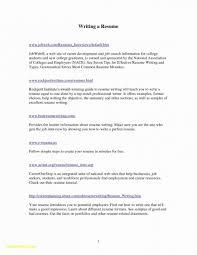 professional resume writing tips resume writing tips 2017 resume templates design for job seeker
