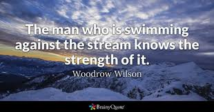 Swimming Quotes BrainyQuote Mesmerizing Swim Quotes