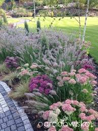 Small Picture full sun low maintenance drought tolerant plants by Ingrid
