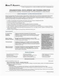 Wizard Resume Stunning Resume Wizard Word Beautiful 48 Stock Resume Template Word 48