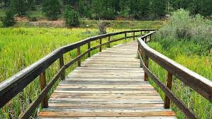 wooden walkway wooden walkway wooden bridge bridge walkway wooden walkway build raised wooden walkway plans