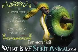 Snake Quotes Sayings Animal Quotes Sayings
