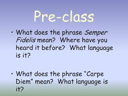 carpe diem essay critical reflection example of carpe diem what does carpe diem mean to you essay homework for youwhat does carpe diem mean to