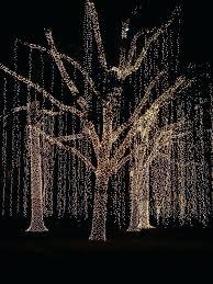classy tree trunk lights on wrap outdoor led blue wondrous net style