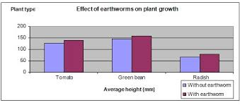 Graph Chart For Science Project Science Fair Projects Earthworms And Plant Growth