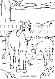 Kleurplaat Paard En Veulen In De Wei Gratis Kleurpaginas Om Te