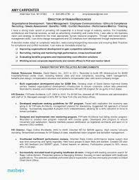 Rn Nursing Resume Examples Free Registered Nurse Resume Templates