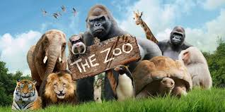 animals in zoo pictures. Contemporary Animals BBC In Animals Zoo Pictures A
