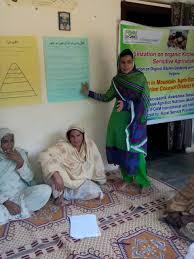 Kitchen Gardeners International Kitchen Gardening Cluster Pakistan Maan Platform