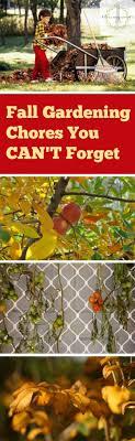 BestVegetablesforFallGardening2jpgFall Gardening