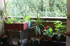 Apartment Patio Herb Garden. Apartment ...