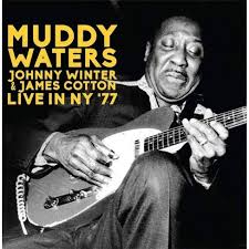 Image result for Muddy Waters.
