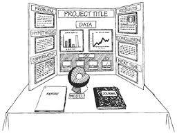 School Trifold Board Project Tri Fold Presentation Layout Science