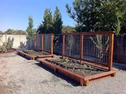 vegetable garden design raised beds talentneeds com