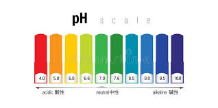 Ph Color Chart The Ph Color Scale Stock Illustration Illustration Of