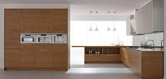 Modern Wood Kitchen Cabinets Kitchen Design Modern Wood Kitchen Ideas Modern Kitchen Ideas