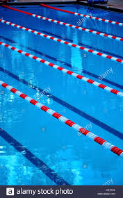 indoor swimming pool with ropes and lanes stock image