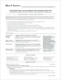 Sample Nanny Resume Resume Writing Format Awesome Example Job Resume