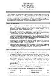 professional cv service by bradley cvs uk and worldwide premier cv service pound279