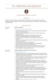 School Counselor Resume samples