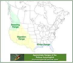 2017 Hummingbird Migration Chart Hummingbird Migration In The Spring And Fall Through The