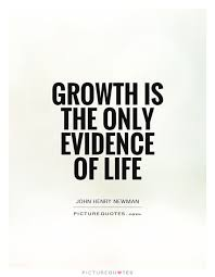 Personal Growth Quotes Amazing Image Result For Growth Sayings D A I L Y M U S I N G S