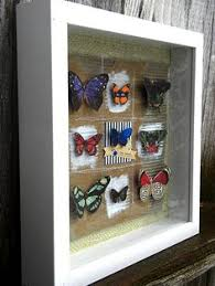How To Decorate Shadow Boxes Shadow Box Ideas To Keep Your Memories and How to Make It Shadow 12
