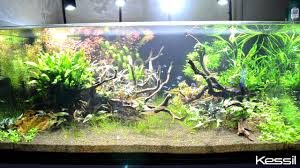 Kessil Aquarium Light Kessil A360we Tuna Sun Led Fw Lighting 90w Kessil