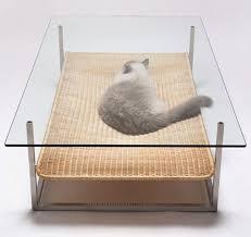 pets furniture. Designed By Koichi Futatsumata Pets Furniture N