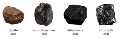 How Is Coal Formed Know It All