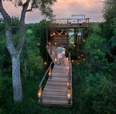 Amazing Tree House Hotels  Eccentric HotelsTreehouse Hotel Africa