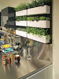 Herb Garden Kitchen Similiar Kitchen Herb Garden Keywords
