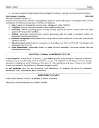 Big Four Resume Sample Senior Financial Executive Resume 27