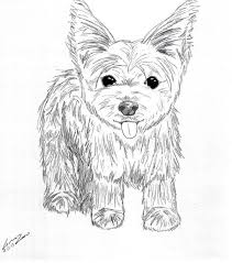 For if you want to color now!! Mandala Yorkie Page 1 Line 17qq Com