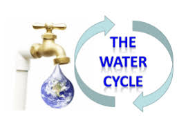 activity   desert water cycle crossword puzzle water cycle power point