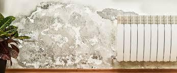 how to repair water damaged drywall