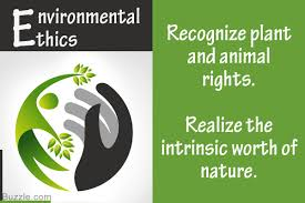 what are environmental ethics and what s your role in saving nature
